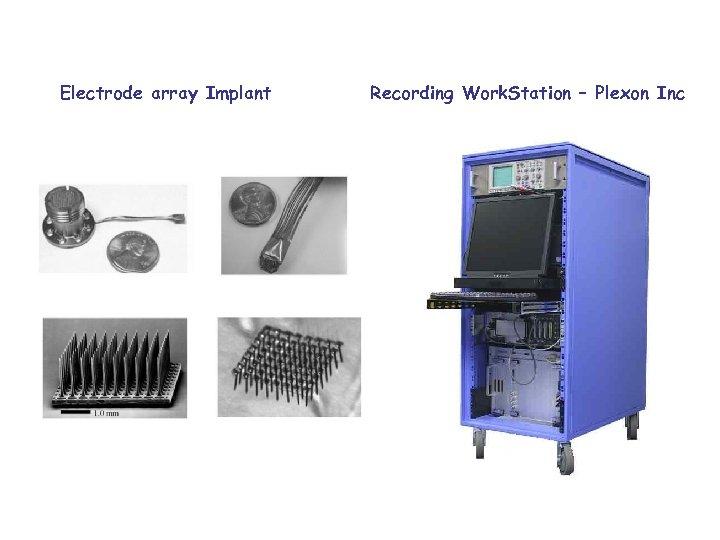 Electrode array Implant Recording Work. Station – Plexon Inc