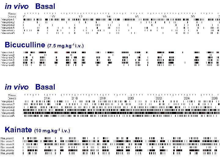 in vivo Basal Bicuculline (7. 5 mg. kg-1 i. v. ) in vivo Basal