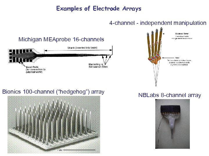Examples of Electrode Arrays 4 -channel - independent manipulation Michigan MEAprobe 16 -channels Bionics