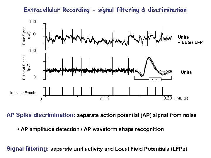 Extracellular Recording - signal filtering & discrimination Raw Signal ( V) 100 0 Units