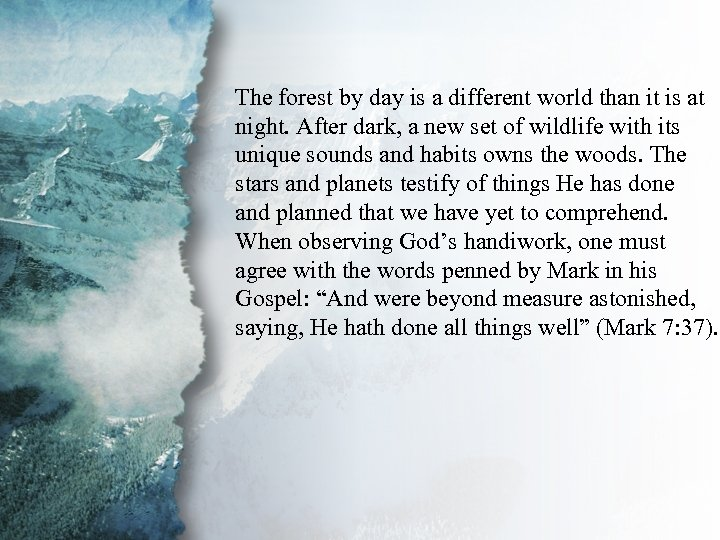 I. Understanding Spiritual The forest by day is a different world than it is