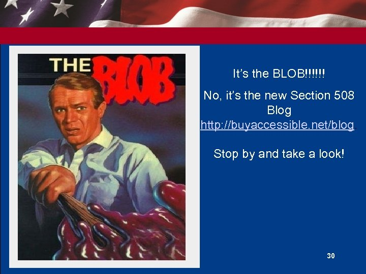 It's the BLOB!!!!!! No, it's the new Section 508 Blog http: //buyaccessible. net/blog. Stop