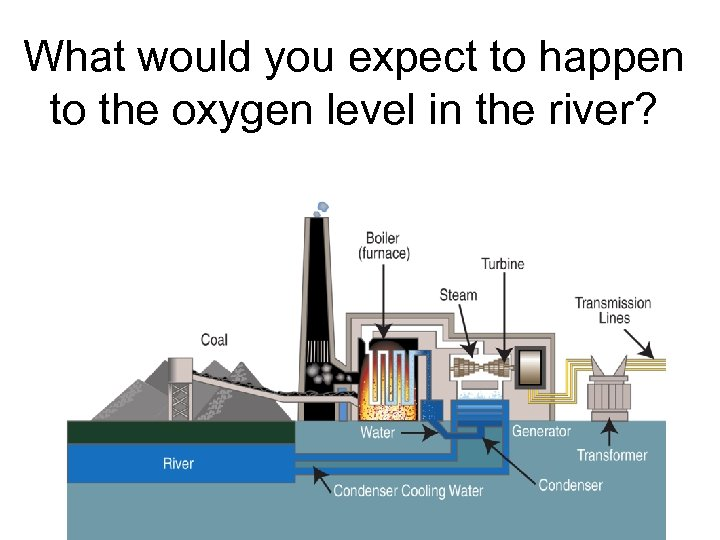 What would you expect to happen to the oxygen level in the river?