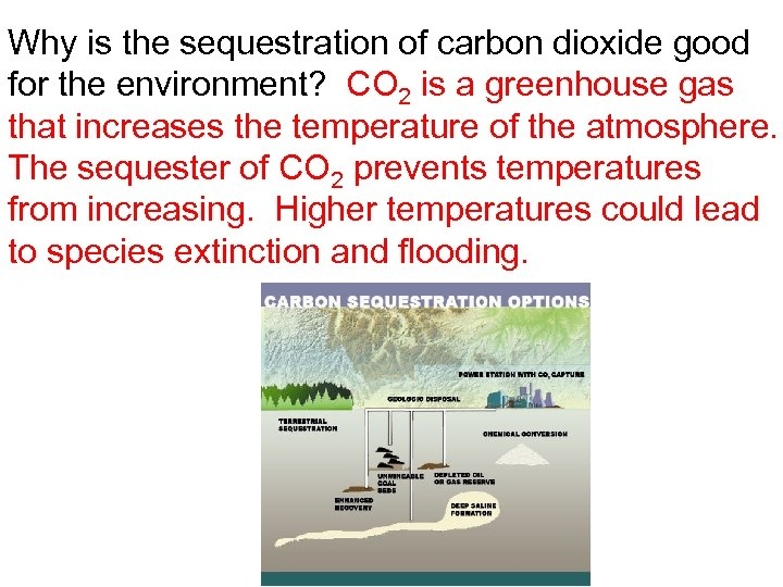 Why is the sequestration of carbon dioxide good for the environment? CO 2 is