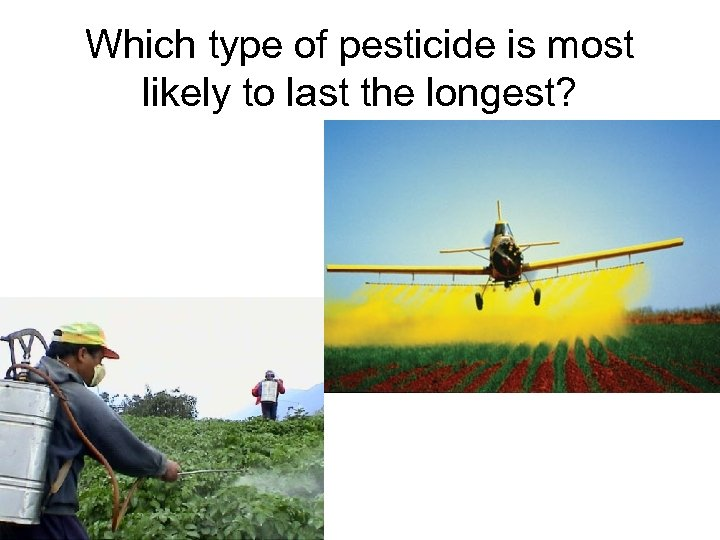Which type of pesticide is most likely to last the longest?