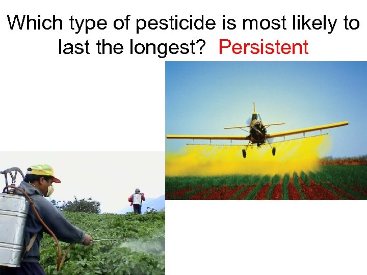 Which type of pesticide is most likely to last the longest? Persistent
