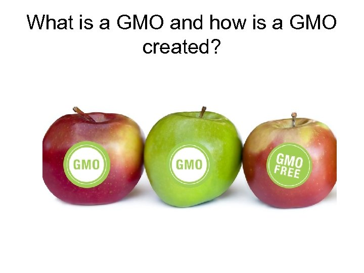 What is a GMO and how is a GMO created?