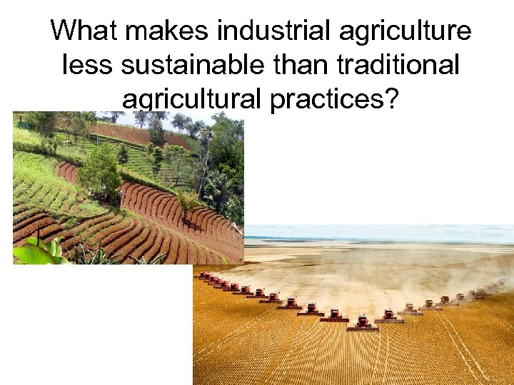 What makes industrial agriculture less sustainable than traditional agricultural practices?