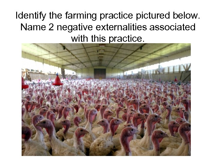 Identify the farming practice pictured below. Name 2 negative externalities associated with this practice.