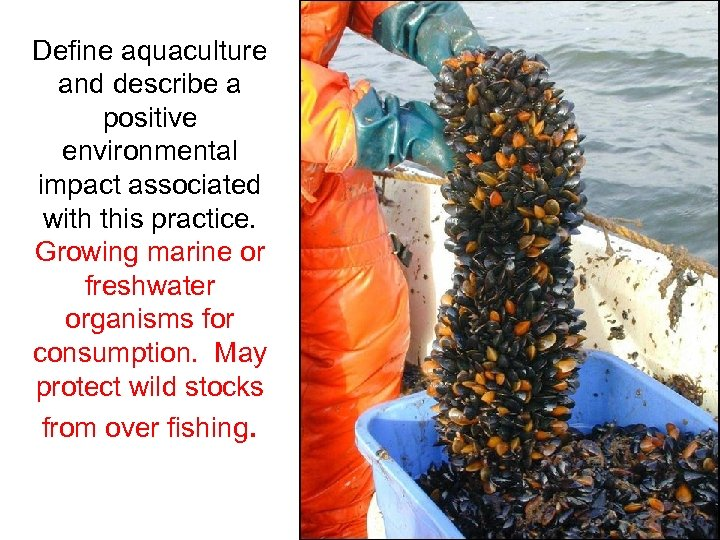 Define aquaculture and describe a positive environmental impact associated with this practice. Growing marine