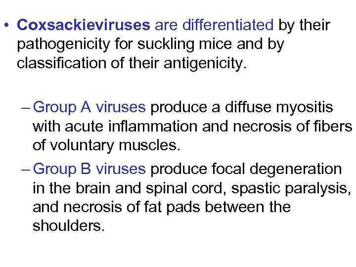 • Coxsackieviruses are differentiated by their pathogenicity for suckling mice and by classification