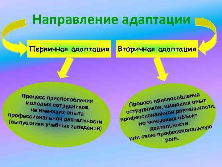 Направление адаптации Первичная адаптация Процесс прис пособления молодых сот рудников, не имеющих опыта профессиона