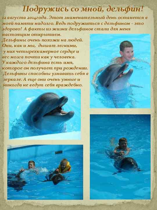Подружись со мной, дельфин! 12 августа 2014 года. Этот знаменательный день останется в