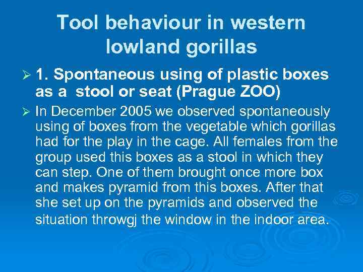 Tool behaviour in western lowland gorillas Ø 1. Spontaneous using of plastic boxes as