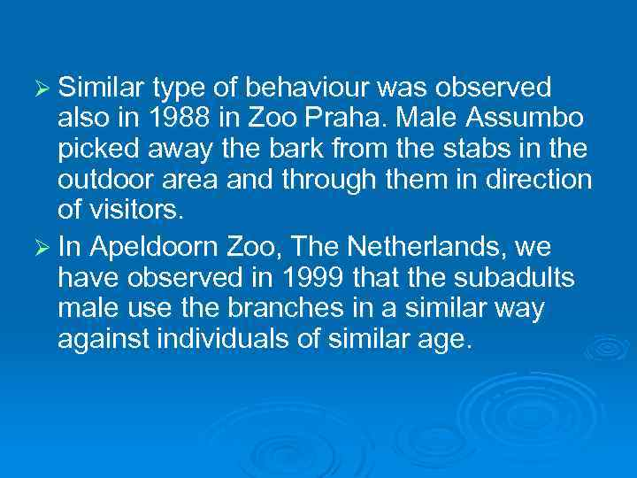 Ø Similar type of behaviour was observed also in 1988 in Zoo Praha. Male