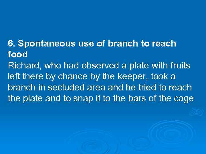 6. Spontaneous use of branch to reach food Richard, who had observed a plate