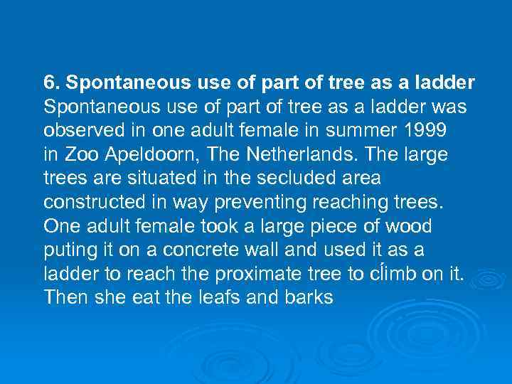 6. Spontaneous use of part of tree as a ladder was observed in one