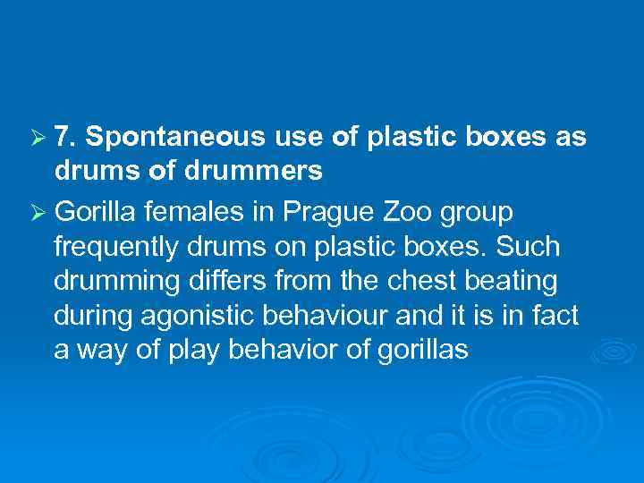 Ø 7. Spontaneous use of plastic boxes as drums of drummers Ø Gorilla females