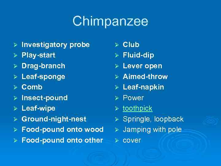 Chimpanzee Ø Ø Ø Ø Ø Investigatory probe Play-start Drag-branch Leaf-sponge Comb Insect-pound Leaf-wipe