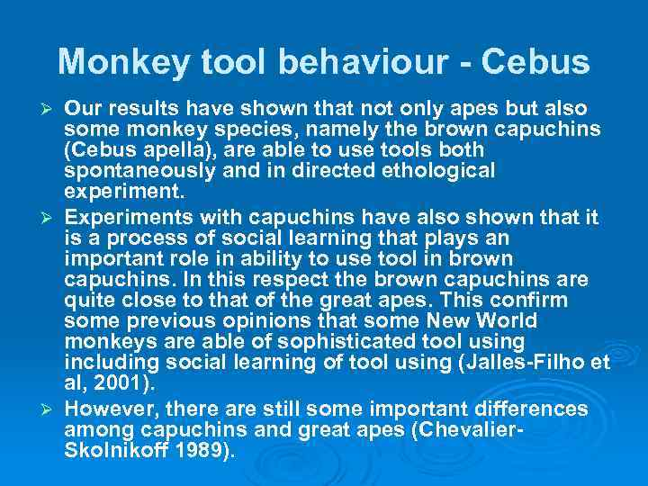Monkey tool behaviour - Cebus Our results have shown that not only apes but