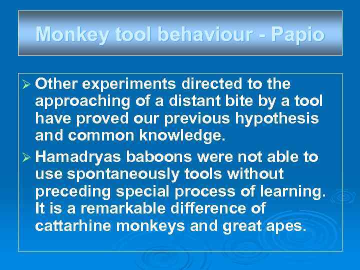 Monkey tool behaviour - Papio Ø Other experiments directed to the approaching of a