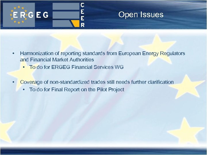 Open Issues • Harmonization of reporting standards from European Energy Regulators and Financial Market