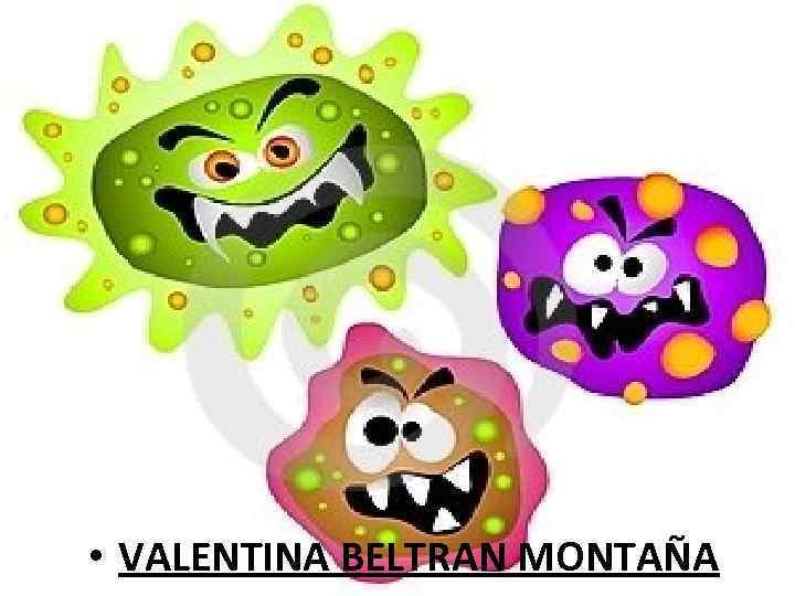 • VALENTINA BELTRAN MONTAÑA