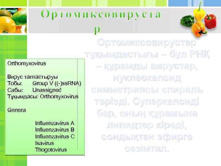 Orthomyxovirus Вирус таптастыруы Тобы: Group V ((-)ss. RNA) Сабы: Unassigned Тұқымдасы: Orthomyxovirus Genera Influenzavirus