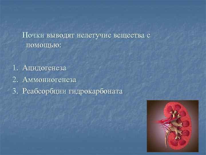 Почки выводят нелетучие вещества с помощью: 1. Ацидогенеза 2. Аммониогенеза 3. Реабсорбции гидрокарбоната