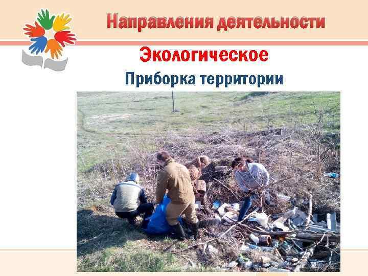 Направления деятельности Экологическое Приборка территории