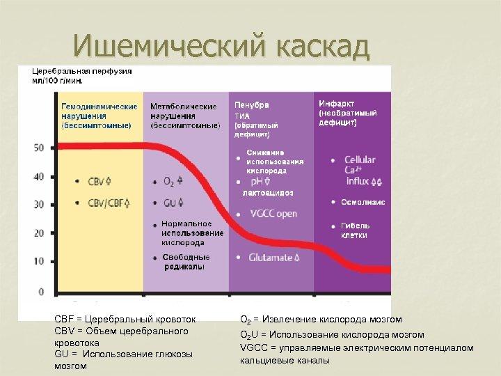 Ишемический каскад CBF = Церебральный кровоток CBV = Объем церебрального кровотока GU = Использование
