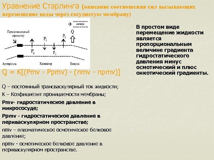 Уравнение Старлинга (описание соотношения сил вызывающих перемещение воды через сосудистую мембрану) Q = K[(Pmv