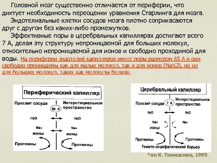 Головной мозг существенно отличается от периферии, что диктует необходимость переоценки уравнения Старлинга для мозга.