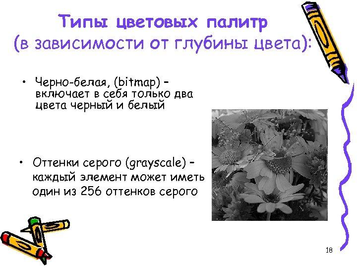 Типы цветовых палитр (в зависимости от глубины цвета): • Черно-белая, (bitmap) – включает в