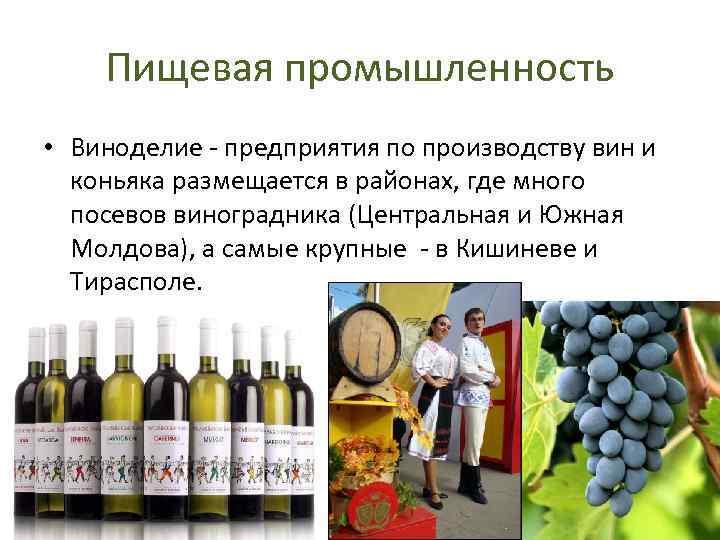 Пищевая промышленность • Виноделие - предприятия по производству вин и коньяка размещается в районах,