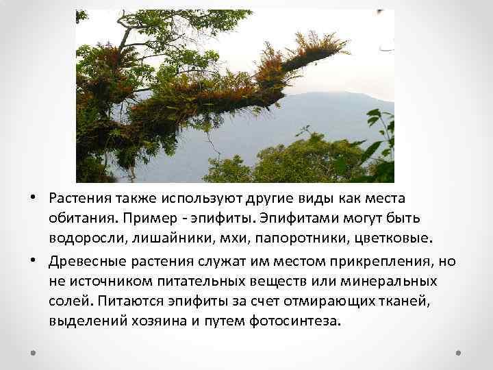 • Растения также используют другие виды как места обитания. Пример - эпифиты. Эпифитами