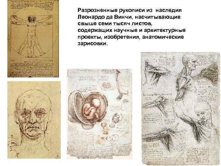 Разрозненные рукописи из наследия Леонардо да Винчи, насчитывающие свыше семи тысяч листов, содержащих научные