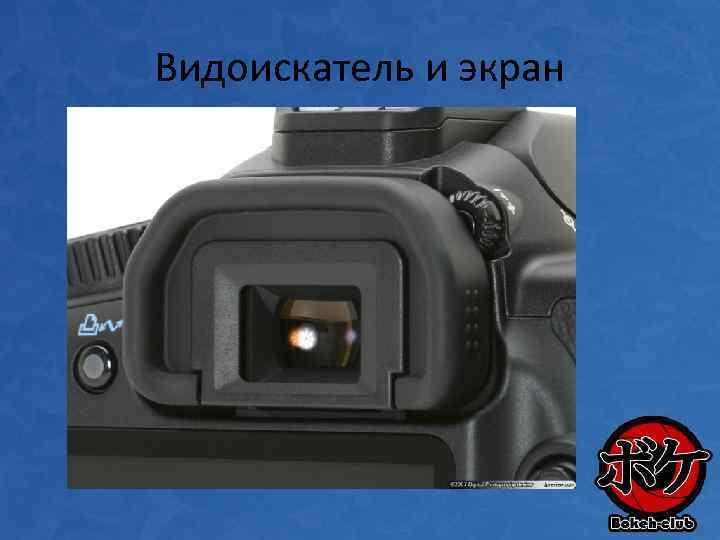 Видоискатель и экран