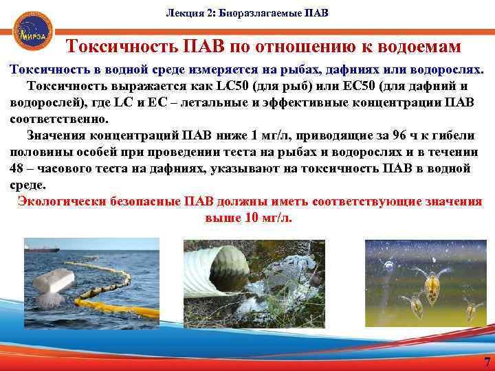 Лекция 2: Биоразлагаемые ПАВ Токсичность ПАВ по отношению к водоемам Токсичность в водной среде