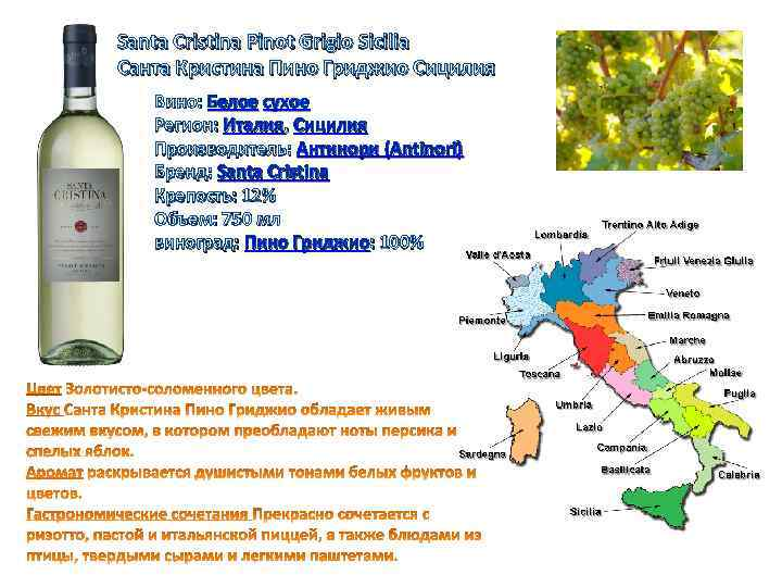 Santa Cristina Pinot Grigio Sicilia Санта Кристина Пино Гриджио Сицилия Вино: Белое сухое Регион: