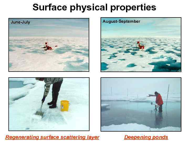 Surface physical properties June-July Regenerating surface scattering layer August-September Deepening ponds