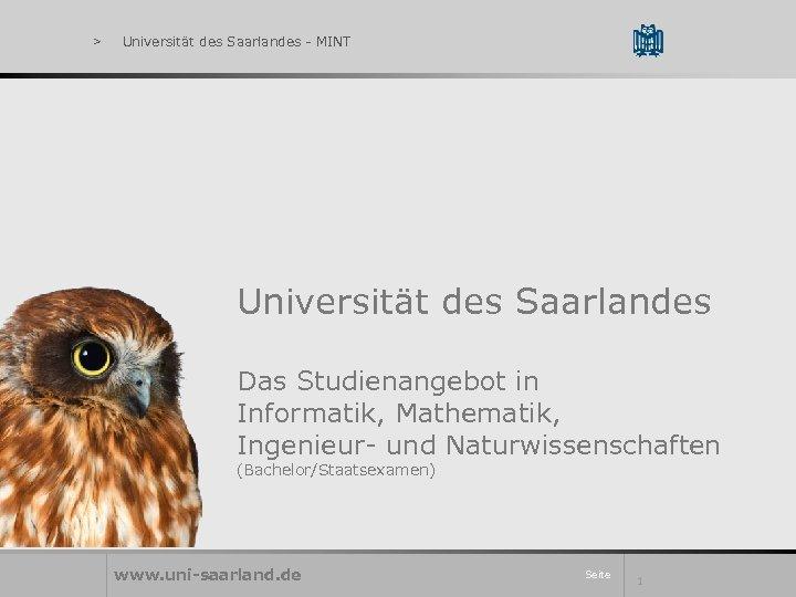 > Universität des Saarlandes - MINT Universität des Saarlandes Das Studienangebot in Informatik, Mathematik,