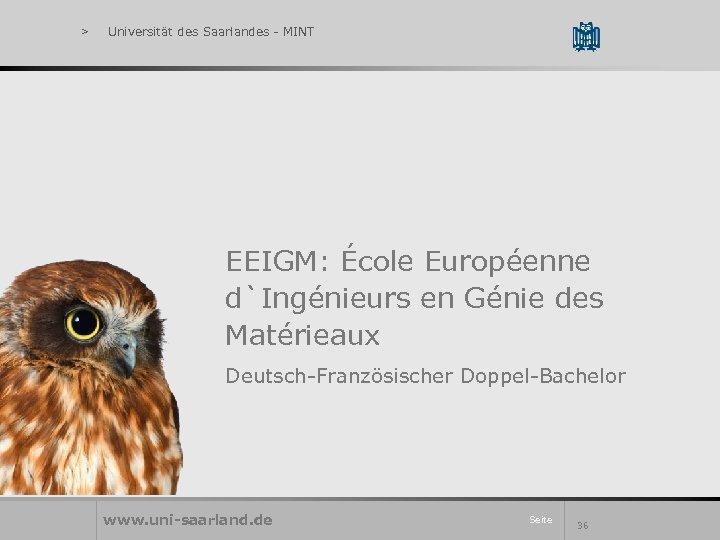 > Universität des Saarlandes - MINT EEIGM: École Européenne d`Ingénieurs en Génie des Matérieaux