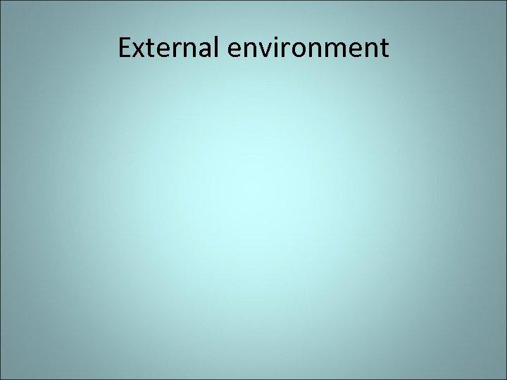 External environment