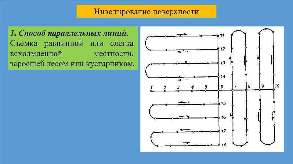 Нивелирование поверхности 1. Способ параллельных линий. Съемка равнинной или слегка всхолмленной местности, заросшей лесом