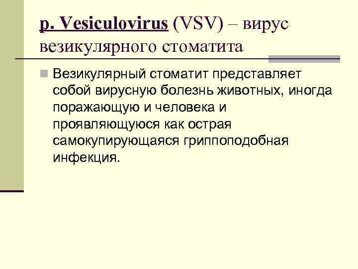 р. Vesiculovirus (VSV) – вирус везикулярного стоматита n Везикулярный стоматит представляет собой вирусную болезнь