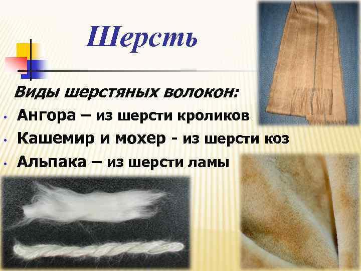 Шерсть Виды шерстяных волокон: • • • Ангора – из шерсти кроликов Кашемир и