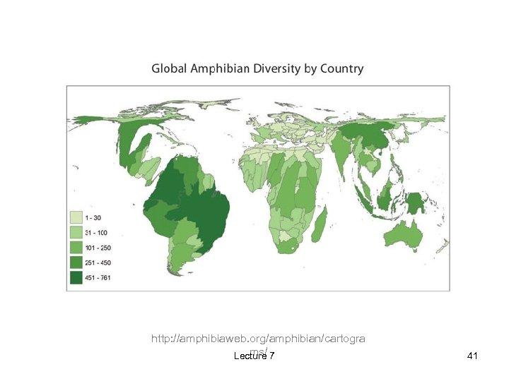 http: //amphibiaweb. org/amphibian/cartogra ms/ Lecture 7 41