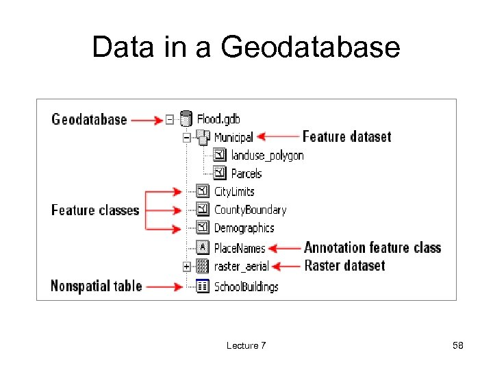 Data in a Geodatabase Lecture 7 58