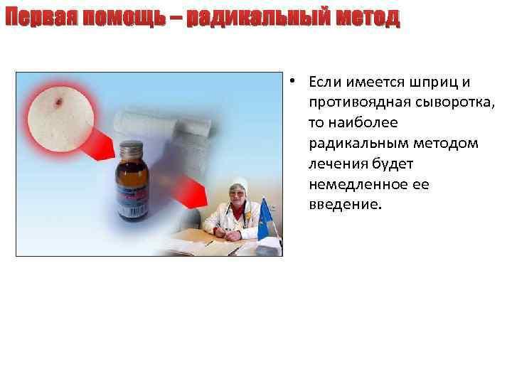 Первая помощь – радикальный метод • Если имеется шприц и противоядная сыворотка, то наиболее